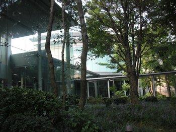 Sagamihara-4.jpg