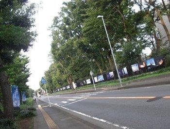 Sagamihara-8.jpg
